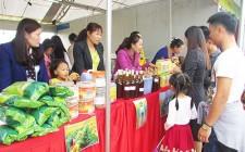 Khai mạc các gian hàng tham gia lễ hội hoa hướng dương Ngày hội hoa hướng dương và Đêm hội sắc xuân miền Tây Nghệ An