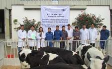 Cty CP sữa TH trao tặng bò đực giống cho Trung tâm Giống gia súc lớn TW, viện chăn nuôi