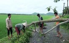 Nghĩa Đàn thiệt hại do cơn bão số 2 ước khoảng 1,6 tỷ đồng