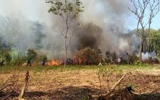 Diễn tập phòng cháy, chữa cháy rừng năm 2017