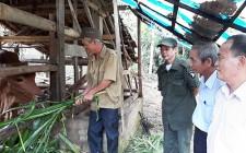 Nỗ lực vươn lên của nạn nhân chất độc da cam huyện Nghĩa Đàn
