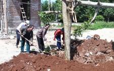 Hội LHPN huyện Nghĩa Đàn trồng cây tại trụ sở UBND xã Nghĩa Tân
