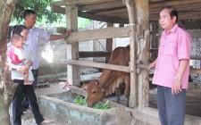 Nghĩa Liên trao tiền hỗ trợ mua bò cho hộ nghèo