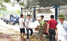 Cấp phát 47.835 kg gạo cho học sinh vùng đặc biệt khó khăn