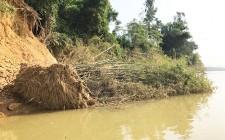 Nỗi lo sạt lở bờ sông của các hộ dân Nghĩa Thịnh