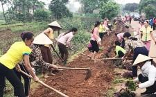 Phụ nữ chung tay xây dựng NTM gắn với cuộc vận động xây dựng gia đình 5 không 3 sạch