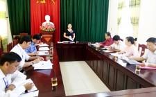 HĐND huyện giám sát về lĩnh vực đất đai tại xã Nghĩa Tân