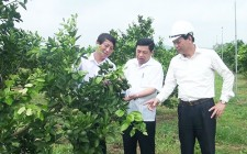 Đồng chí Nguyễn Xuân Đường thăm một số cơ sở sản xuất trên địa bàn Nghĩa Đàn