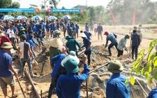 350 đoàn viên thanh niên ra quân làm đường giao thông nông thôn