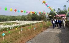 Chấm thi xã nông thôn mới đẹp 2018 tại Nghĩa Bình