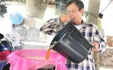 Nghĩa Đàn sản xuất mật mía phục vụ tết nguyên đán