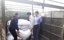 Tiếp nhận 8.145 kg gạo hỗ trợ dịp tết Nguyên đán Kỷ Hợi 2019