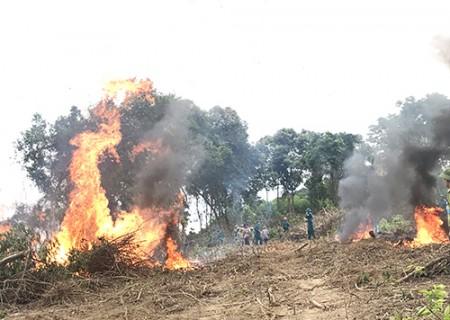 Diễn tập chữa cháy rừng qui mô liên xã vùng giáp ranh hai tỉnh Nghệ An – Thanh Hóa năm 2019