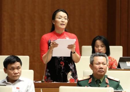 Đại biểu Hoàng Thị Thu Trang đề xuất giải pháp phát triển kinh tế vùng đồng bào dân tộc thiểu số