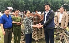 Nghĩa Lộc trao 6 con bò giống sinh sản cho hộ nghèo