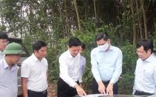 Đồng chí Hoàng Nghĩa Hiếu thăm, kiểm tra một số dự án, mô hình phát triển nông nghiệp trên địa bàn huyện Nghĩa Đàn