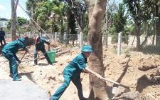 Lực lượng dân quân cụm số 2 làm công tác dân vận tại trường tiểu học thị trấn Nghĩa Đàn