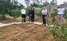 Hội nông dân tỉnh tham quan mô hình vườn chuẩn tại Nghĩa Đàn