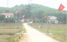 Thẩm định đạt chuẩn NTM tại làng Nam Lâm, Nghĩa Lâm